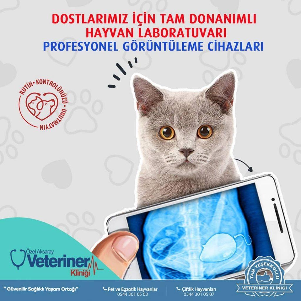 Özel Aksaray Veteriner Kliniği