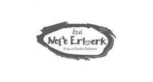 31238200032576722847nese-erberk